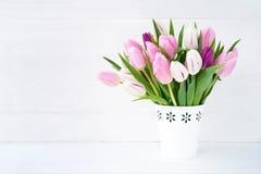 Ramalhete branco e cor-de-rosa das tulipas no vaso branco no fundo branco Fundo do feriado, Fotografia de Stock Royalty Free