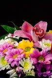 Ramalhete brilhante das flores de tipos diferentes Fotos de Stock Royalty Free
