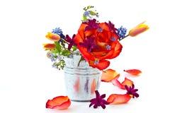 Ramalhete brilhante das rosas e das flores da mola imagem de stock