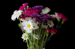 Ramalhete colorido das flores Imagem de Stock Royalty Free