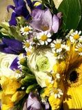 Ramalhete colorido das flores Composi??o com colorido Flores Frésia azul e gerbera amarelo, rosas brancas Close-up fotos de stock