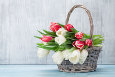 Ramalhete colorido das tulipas Fotos de Stock