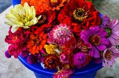 Ramalhete colorido dos Wildflowers em um potenciômetro azul imagens de stock royalty free