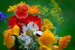 Ramalhete com flores de florescência Fotografia de Stock