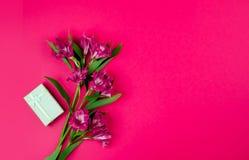 Ramalhete congratulatório das flores em um fundo cor-de-rosa postcard foto de stock