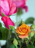 Ramalhete cor-de-rosa colorido das flores imagem de stock