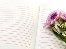 Ramalhete cor-de-rosa das flores do caderno e dos crisântemos bonitos Fotografia de Stock