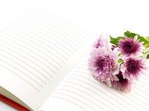 Ramalhete cor-de-rosa das flores do caderno e dos crisântemos bonitos Foto de Stock