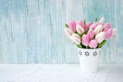 Ramalhete cor-de-rosa das tulipas no vaso branco no fundo azul Fundo do feriado, espaço da cópia Valentine Day, dia de mães, aniv Fotografia de Stock Royalty Free