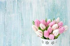 Ramalhete cor-de-rosa e branco das tulipas no vaso branco na luz - fundo azul Fundo do feriado, espaço da cópia Valentine Day, di Fotos de Stock