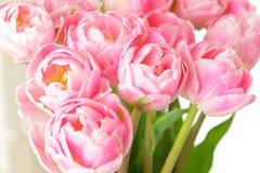 Ramalhete cor-de-rosa nostálgico da flor da tulipa imagem de stock royalty free