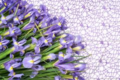 Ramalhete da íris na toalha de mesa decorativa Fundo do feriado Copie o espaço Fotos de Stock