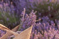 Ramalhete da alfazema em um saco de vime no por do sol do campo da alfazema imagens de stock