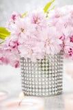 Ramalhete da amêndoa de florescência bonita (triloba do prunus) imagens de stock royalty free