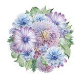 Ramalhete da aquarela com flores anemone Peônia Ilustração da aguarela Imagens de Stock