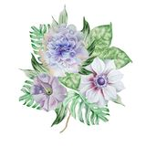 Ramalhete da aquarela com flores anemone petunia Peônia Imagem de Stock Royalty Free