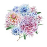 Ramalhete da aquarela com flores dahlia anemone Peônia Imagens de Stock Royalty Free