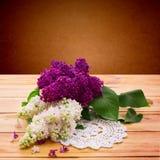 Ramalhete da flor colorida da mola Foto de Stock