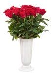 Ramalhete da flor das rosas vermelhas no vaso branco isolado Fotos de Stock
