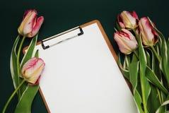 Ramalhete da flor de Tulip Pink e cartão vazio do Livro Branco no fundo azul do adark com espaço da cópia Configuração lisa Imagem de Stock