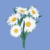 Ramalhete da flor do prado Imagem de Stock Royalty Free