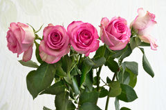 Ramalhete da flor na luz solar Fotografia de Stock Royalty Free