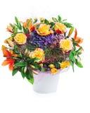 Ramalhete da flor no vaso isolado Fotografia de Stock