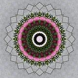 Ramalhete da flor visto através do caleidoscópio Fotos de Stock