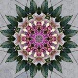 Ramalhete da flor visto através do caleidoscópio Foto de Stock Royalty Free