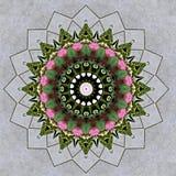 Ramalhete da flor visto através do caleidoscópio Fotos de Stock Royalty Free