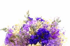 Ramalhete da hortênsia das flores no fundo branco imagem de stock