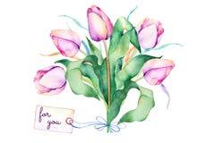 Ramalhete da mola com ramos, tulipas roxas delicadas, folhas ilustração stock