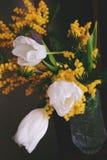 Ramalhete da mola das tulipas brancas Fotografia de Stock Royalty Free