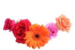 Ramalhete das flores Imagens de Stock