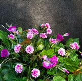 Ramalhete das flores artificiais no fundo de pedra imagens de stock royalty free