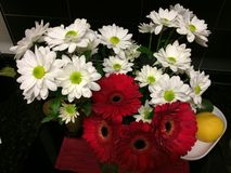 Ramalhete das flores brancas e vermelhas imagens de stock