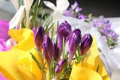 Ramalhete das flores da mola Fotos de Stock Royalty Free