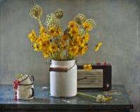 Ramalhete das flores e das passas de Corinto Fotos de Stock Royalty Free