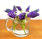 Ramalhete das flores em um copo transparente Fotografia de Stock Royalty Free