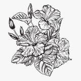 Ramalhete das flores Frame floral Imagens de Stock Royalty Free