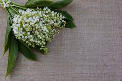 Ramalhete das flores para felicitações fotos de stock