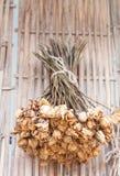 Ramalhete das flores secadas que penduram no fundo de bambu Imagens de Stock Royalty Free
