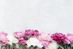 Ramalhete das peônias no fundo cinzento Fundo floral Imagem de Stock Royalty Free