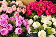 Ramalhete das peônias para a venda Fotos de Stock Royalty Free