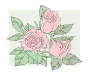 Ramalhete das rosas Imagens de Stock