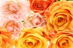 Ramalhete das rosas Imagem de Stock