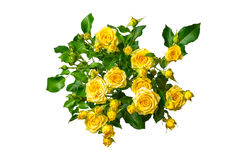 Ramalhete das rosas amarelas isolado no fundo branco Fotos de Stock