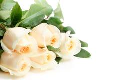 Ramalhete das rosas brancas Imagem de Stock