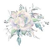 Ramalhete das rosas brancas da aquarela com bagas brancas imagem de stock