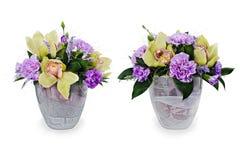 ramalhete das rosas, dos cravos-da-índia e das orquídeas Imagens de Stock